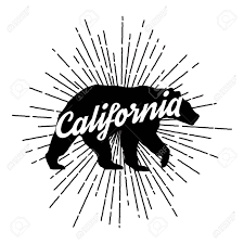 Vintage California Bear With Sunbursts Vector Graphics And