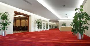 Carpet Sales Perth by Carpet Cleaning Perth Lightning Dry Carpet Cleaning