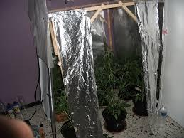 meilleur chambre de culture armoire culture cannabis meilleur de chambre de culture pas cher