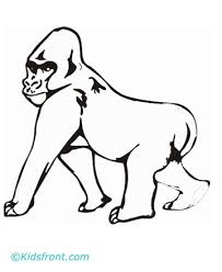 Baby Mountain Gorilla Coloring Pages Pictures To Pin On Pinterest