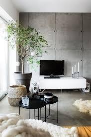 indoor tree concrete living room wohnung wohnzimmer