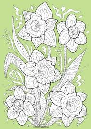 Daffodil Doodle Colour Pop Colouring Page
