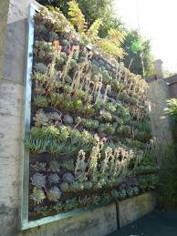 Wall Art Stylish Inspiration Ideas Succulent Living With Plants On Walls Vertical Garden Systems 3x3