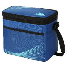 Artic Zone Core Lunchbox Caddy Blue