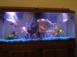 Star Wars Fish Tank Decorations by Fish Tank Decorations 55 Gallon 55 Gallon 2017 Fish Tank