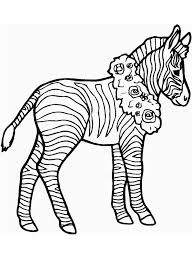 Top Zebra Coloring Page Cool And Best Ideas