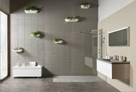 pflanzen als badezimmerdeko acquabella