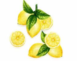 LEMON MAGNETS Set Of 3 Lemons Lemon Decor Kitchen Magnets
