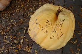 Pumpkin Patches Mankato Mn by Pumpkins Minnesota Prairie Roots