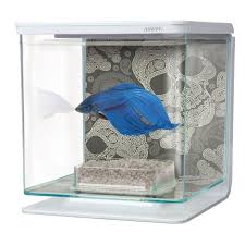 aquarium beta achat vente aquarium beta pas cher cdiscount