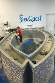 SEAQUEST AQUARIUM UTAH | EVERYDAY JENNY Kids And Sharks A Fun Morning At Seaquest Las Vegas Vintage Blue Under The Sea Interactive Aquarium Discount Tickets New Attraction Comes To Planned For River Ridge Mall In The Salt Project Things Do Planned Aquarium Folsom Faces Community Opposition Deal Now Valid All Summer Admission Tickets Or Ultimate Experience Package Certifikid Seaquests Problems Extend Beyond Discount Opening United Moms Network Quest Coupons Mk710 Deals