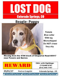 Lost Dog Poppy – Colorado Springs , Colorado - May 01, 2017 Photos From Tuesdays Practice Colorado Springs Sky Sox Official The Collective Set For March Opening Food News Lease Retail Space In Barnes Marketplace On 445994 Rd View Weekly Ads And Store Specials At Your Baptist Church Get A Job Monday Soar Career Into Wild Blue Car Wash Video Apts Townhomes Stetson Meadows Ppt Cdot Funding Powers Boulevard State Hwy 21 Werpoint Cstution Co Planet Fitness Top 25 Accidentprone Intersections Security Service Federal Credit Union Branch Home Koaacom Continuous Pueblo