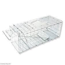 live cat trap cat traps nz humane live capture maintrac