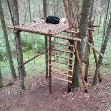 Tree Shelter Wildernesssurvivalshelter