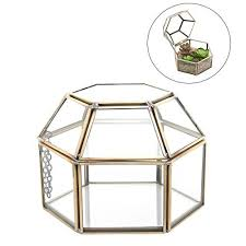 475 Inch Faceted Hexagonal Clear Glass Brass Metal Hinged Top Lid Plant Terrarium Box Tabletop Display Case