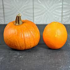 Pumpkin Soup Tureen Recipe by Savory Bread Pudding Pumpkin Tureen Pinch And Swirl
