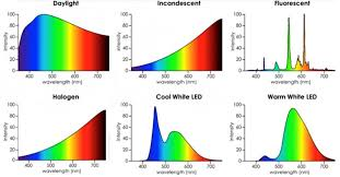 white led light and its possible wavelength spectrum emission
