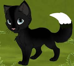 cat creator warriors oc kitten maker by bballgirl2009 on deviantart warrior