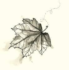 illustration falling leaf