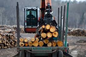 Truck Driver Shortages Hitting Canada's Forest Products Sector - 680 ... Truck Driver Resume Template Inspirational Duties Kayskehauk Contemporary Design Cdl Job Description For Jd Driver Shortages Hitting Canadas Forest Products Sector 680 Best Of 9 Sample Application Letter A How To Be A Trash Truck Drivers Job Description Sample Dump Resume Downloads Billigfodboldtrojer For Dispatcher Summary Forklift Operator School Bus Study Beautiful Lowboy Equipment Hauler
