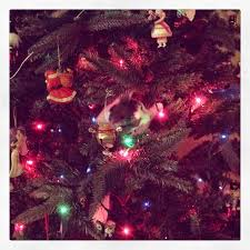 Simons Cat Discovers Christmas Tree by West Metro Mommy Reads December 2014