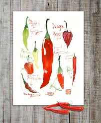 Kitchen Decor Red Hot Chili Peppers Watercolor Painting 8X10 Print Food Art Poster