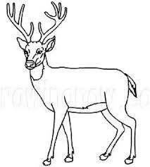 Big Deer Coloring Pages