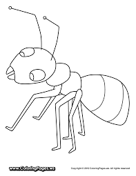 Ant Coloring Pages For Kids Preschoolers