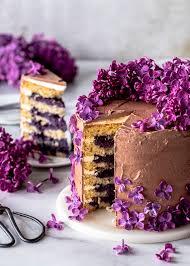 blaubeer schokoladen torte