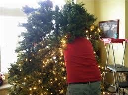 Xmas Tree Waterer by Christmas Watering Christmas Tree Beautiful Christmas Tree