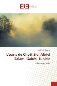 100 L Oasis Oasis De Chott Sidi Abdel Salam Gabs Tunisie Ralits