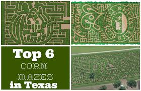 Pumpkin Patch Colorado Springs 2015 by Top 6 Texas Corn Mazes For 2017 Pumpkin Patches In Texas
