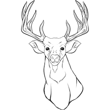 Download Coloring Pages Deer Page Free Printable For Kids Line Drawings