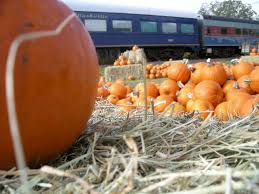 Pumpkin Patch Miami Lakes by Pumpkin Patch Express 2017 Parrish Florida Halloween Events