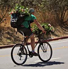 Flower San Francisco Citizen