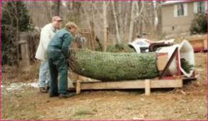 Christmas Tree Baler For Sale Used