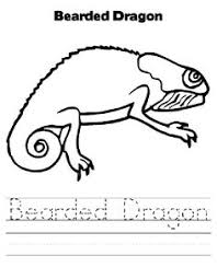 Bearded Dragon Animal Colouring Pages Pinterest And