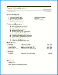 Resume Computer Skills Examples What Should I Put On My For Unique List Puter Of Simple