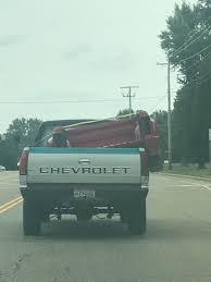 Truck Bed Inside Of Trucks Bed | Pets Funny | Pinterest | Truck Bed