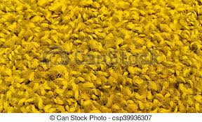 Bright Yellow Carpet Texture