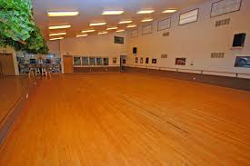 Rosco Adagio Dance Floor by Our Studios