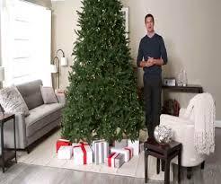Plantable Christmas Trees Columbus Ohio by Walmart Christmas Trees Christmas Lights Decoration