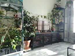 pin nathan washburn auf salon indoor pflanzen dekor