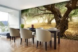 olivenbäume fototapeten landschaften fototapeten fixar de