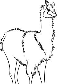 Coloring PagesExtraordinary Llama Pages Animal Print