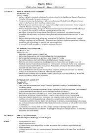Pathologist Cv Resumes - Magdalene-project.org Essay Itructions For Fulltime Master Applicants Sample Speech Language Resume Samples Velvet Jobs Pathology 92 Resume Pathologist Examples New Sample 50 Inspirational Slp Asha Linuxgazette 10 Speech Pathology Samples Proposal 13 Fresh Pics Of Rumes Gobishnet Barraquesorg 30 Cover Letters Riverheadfd Deidentified Medical Slp Resumepdf Docdroid