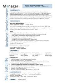 Business Development Manager CV Template Managers Resume Marketing Job Application Revenue Sample