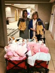 Baby Dolls For Dementia Patients