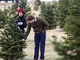 Aspirin Keep Christmas Trees Alive by Tips To Keep Your Christmas Tree Fresh
