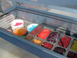 nelson dipping cabinets for ice cream gelato frozen custard